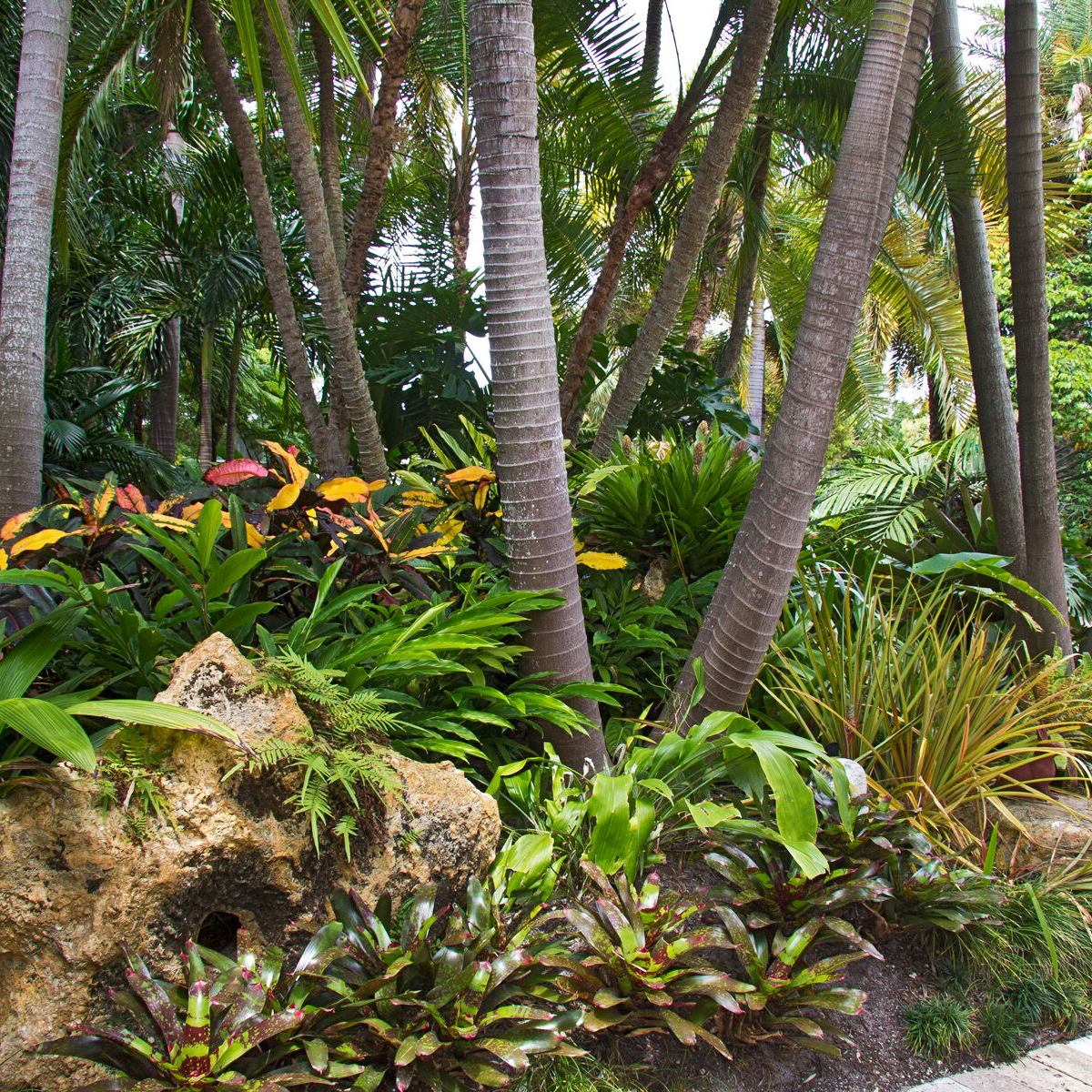 Contemporary Tropical Garden Design U0026 Installations.